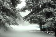 Кефалония зимой