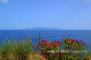 Отели Кефалонии: домик с 2 спальнями на Кефалонии, Греция. Греция остров.
